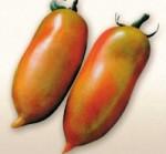 pomodoro gigante a corno golia