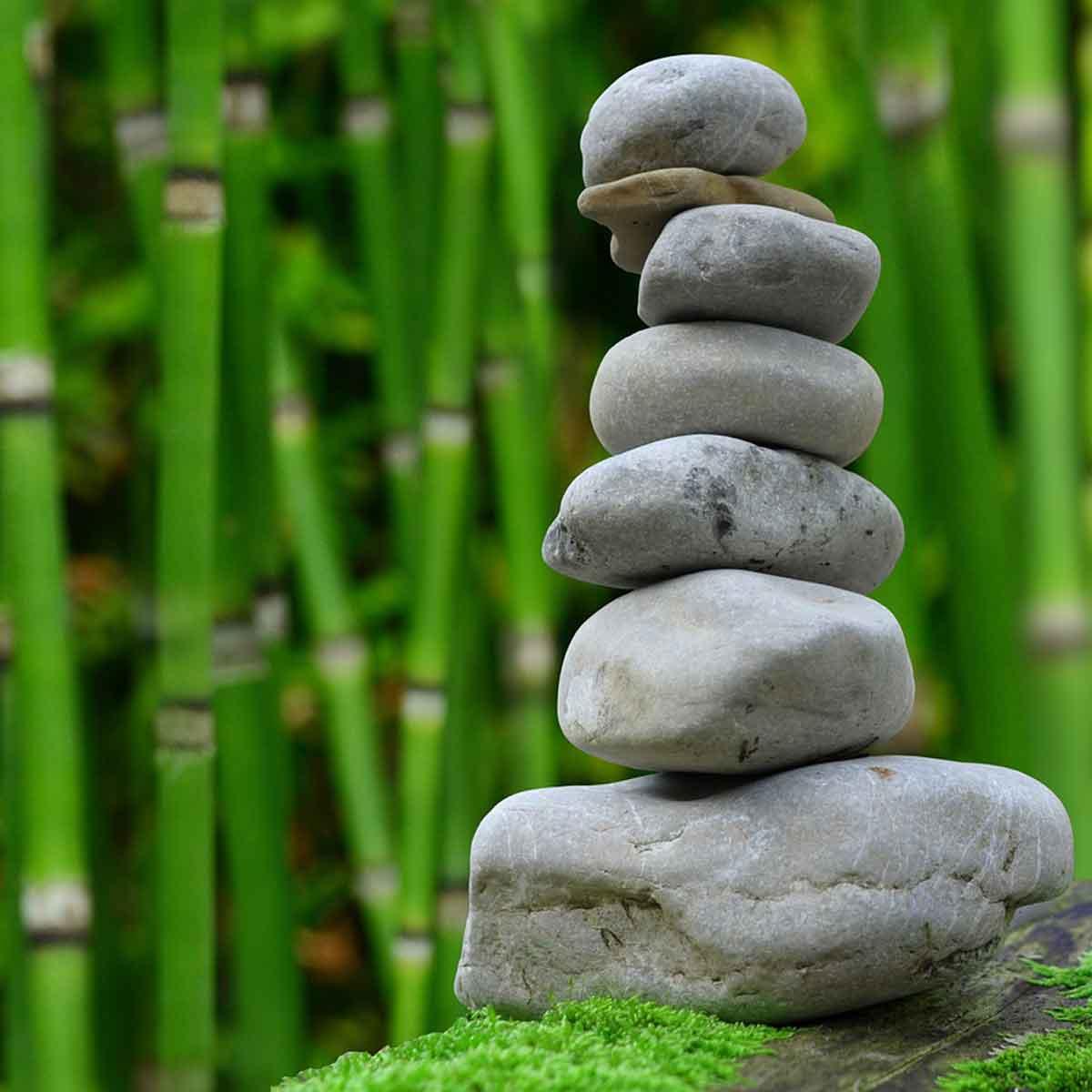 Calma e serenità nel giardino giapponese