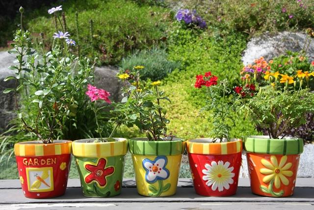 Le piante anti-caldo: erbe, fiori e verdure