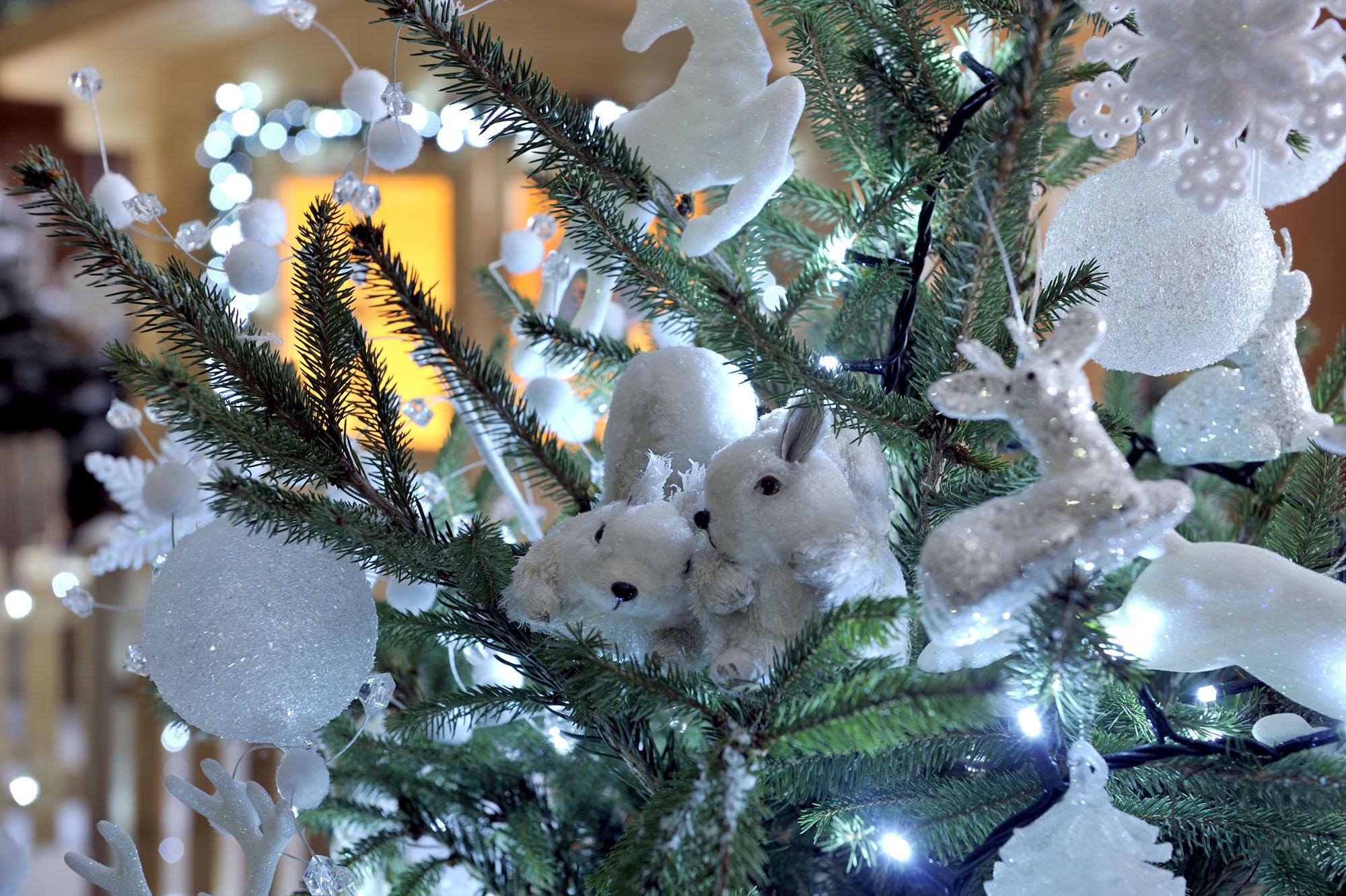 Tutti i segreti per un albero di Natale perfetto