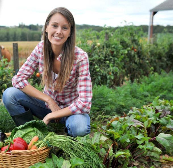 Coltivare un orto: terriccio e piante ideali