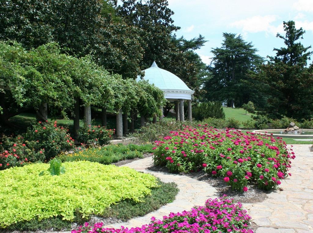 Progettare il giardino: le caratteristiche delle piante