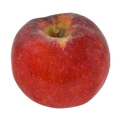 Melo Red Topaz