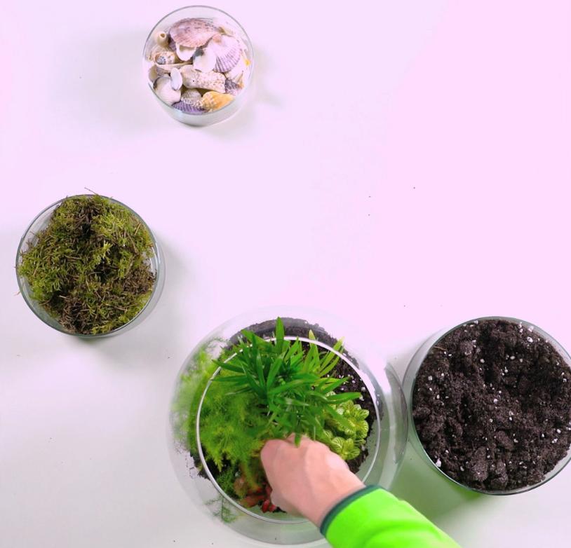 Tutorial terrario fai da te o composizioni in vetro