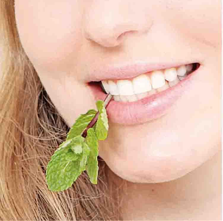 Menta per la cosmesi e il benessere