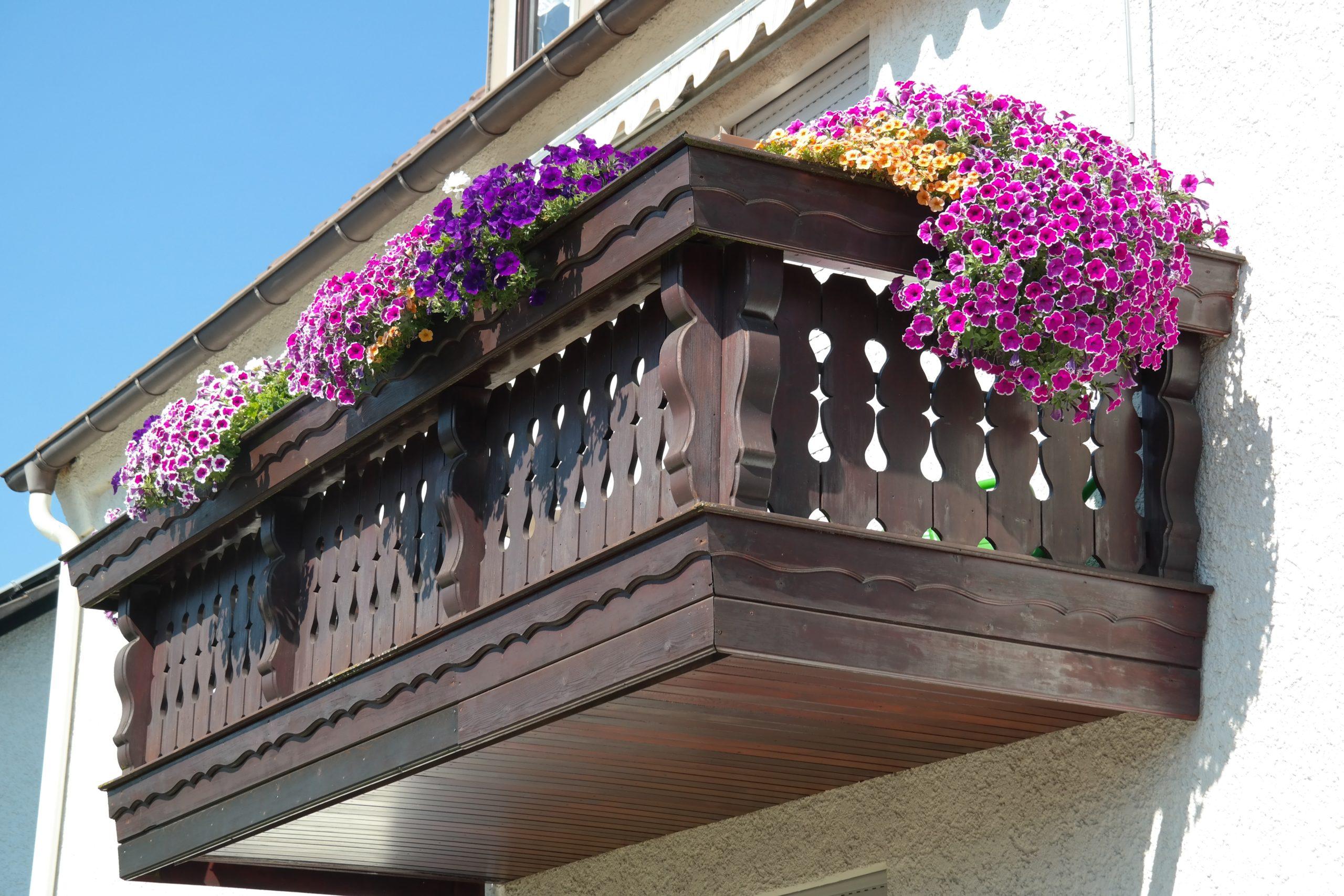 Tutti i segreti per avere meravigliosi balconi fioriti