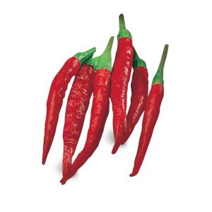 Peperoncino Cayenna corto
