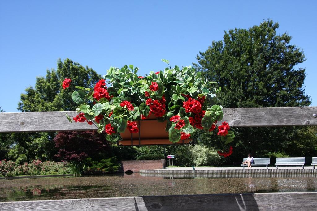 Balconi verdi e fioriti