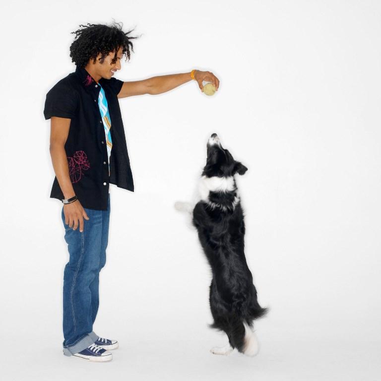 Livello di attività e problemi di comportamento del cane