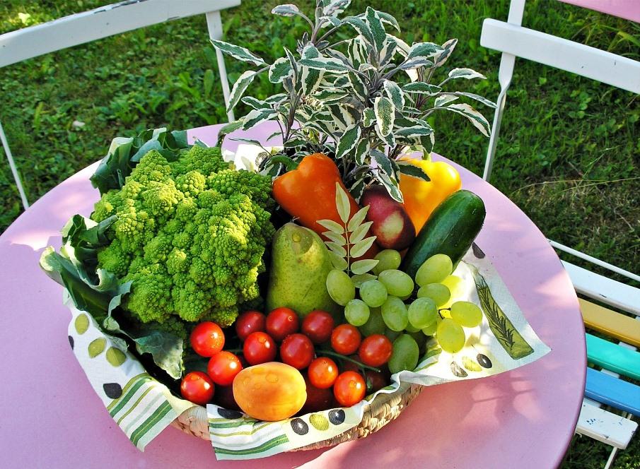 Nell'orto la raccolta degli ortaggi ha le sue regole