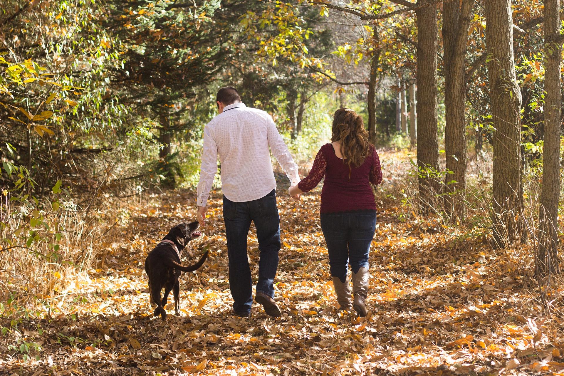 Noi e il cane, una coppia che può diventare famiglia