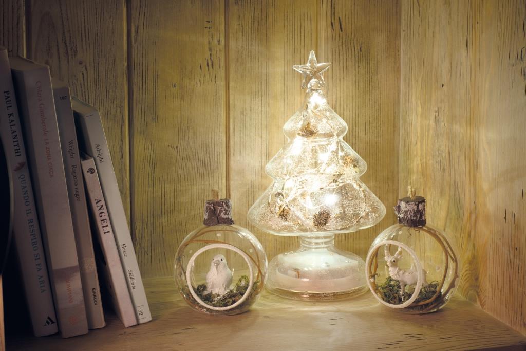 Il Natale di ghiaccio 03