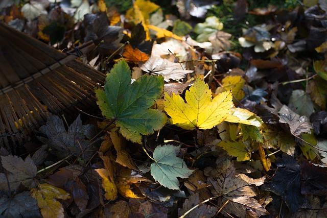Il piacere del giardinaggio in autunno