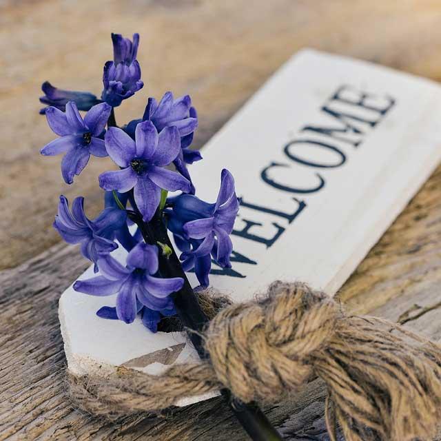 Le fragranze di fiori e piante stimolano le nostre emozioni