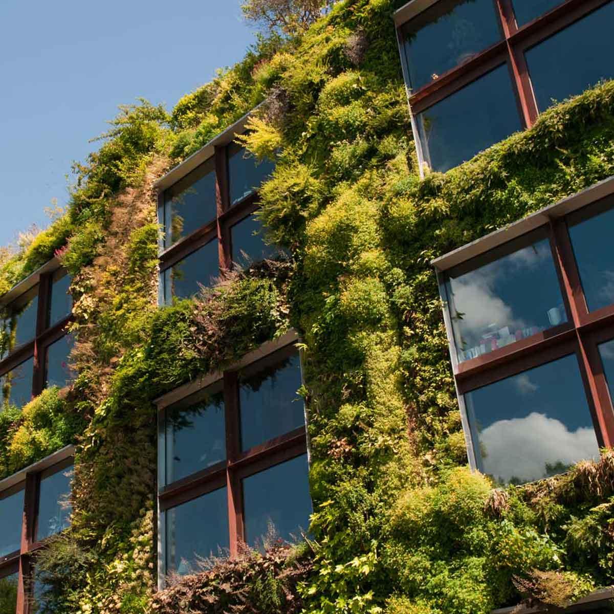 Terrazzi e balconi più verdi: lotta al riscaldamento globale