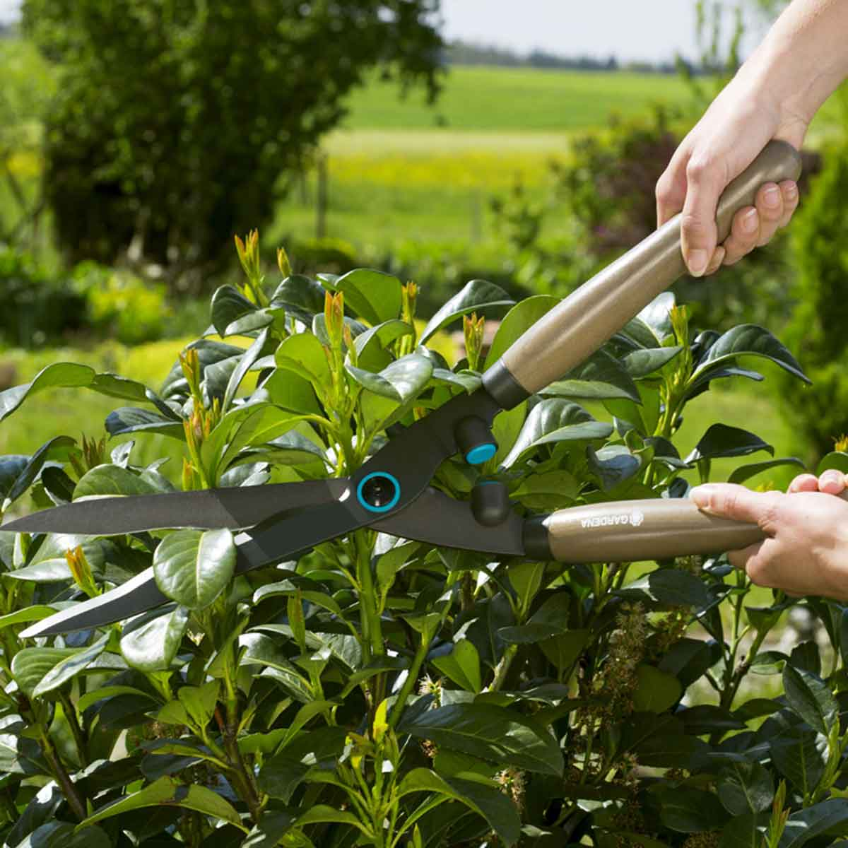 Gardena Cesoie per siepi NatureCut FSC®
