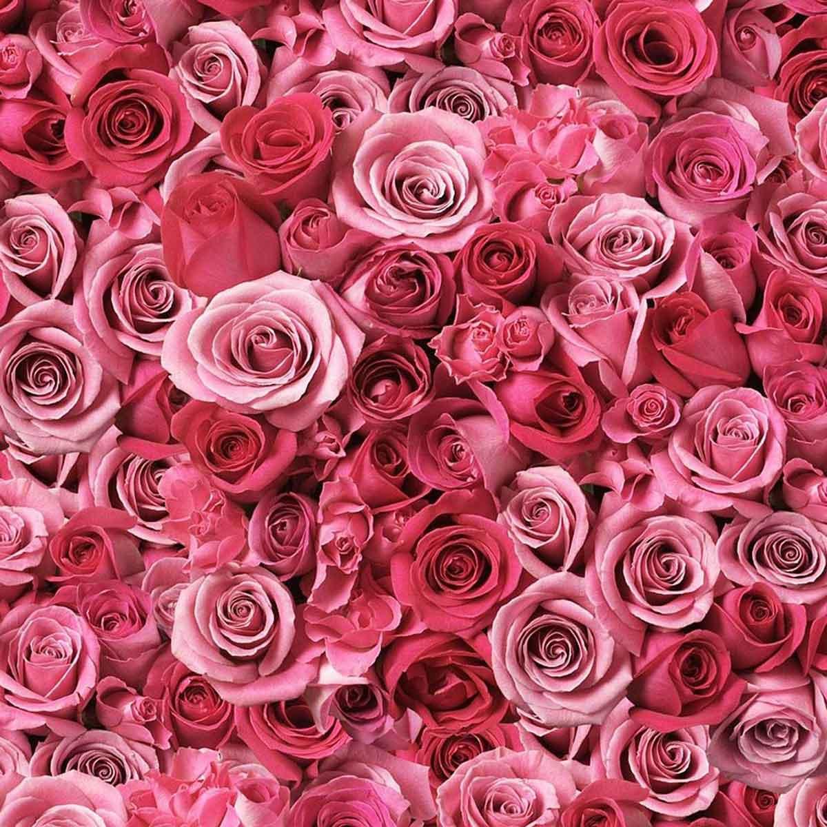 La terapia del colore con il rosa