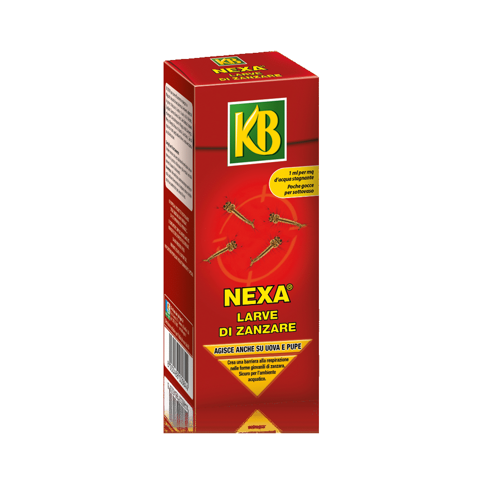 Nexa Larve di Zanzare