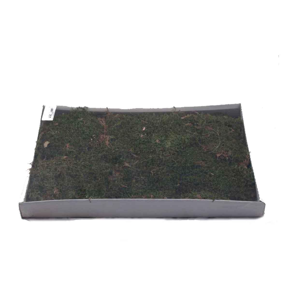 Presepe – Scatola di Muschio a Tappeto 350g