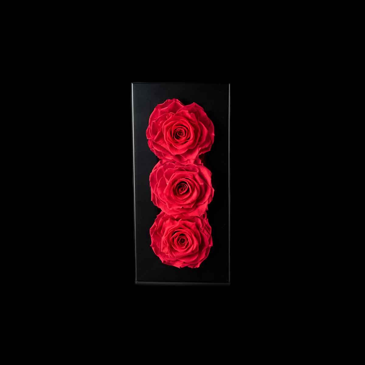 Ars Nova – Quadro 3 rose Gran Prix