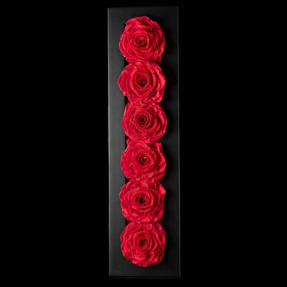 Ars Nova – Quadro 6 rose Gran Prix