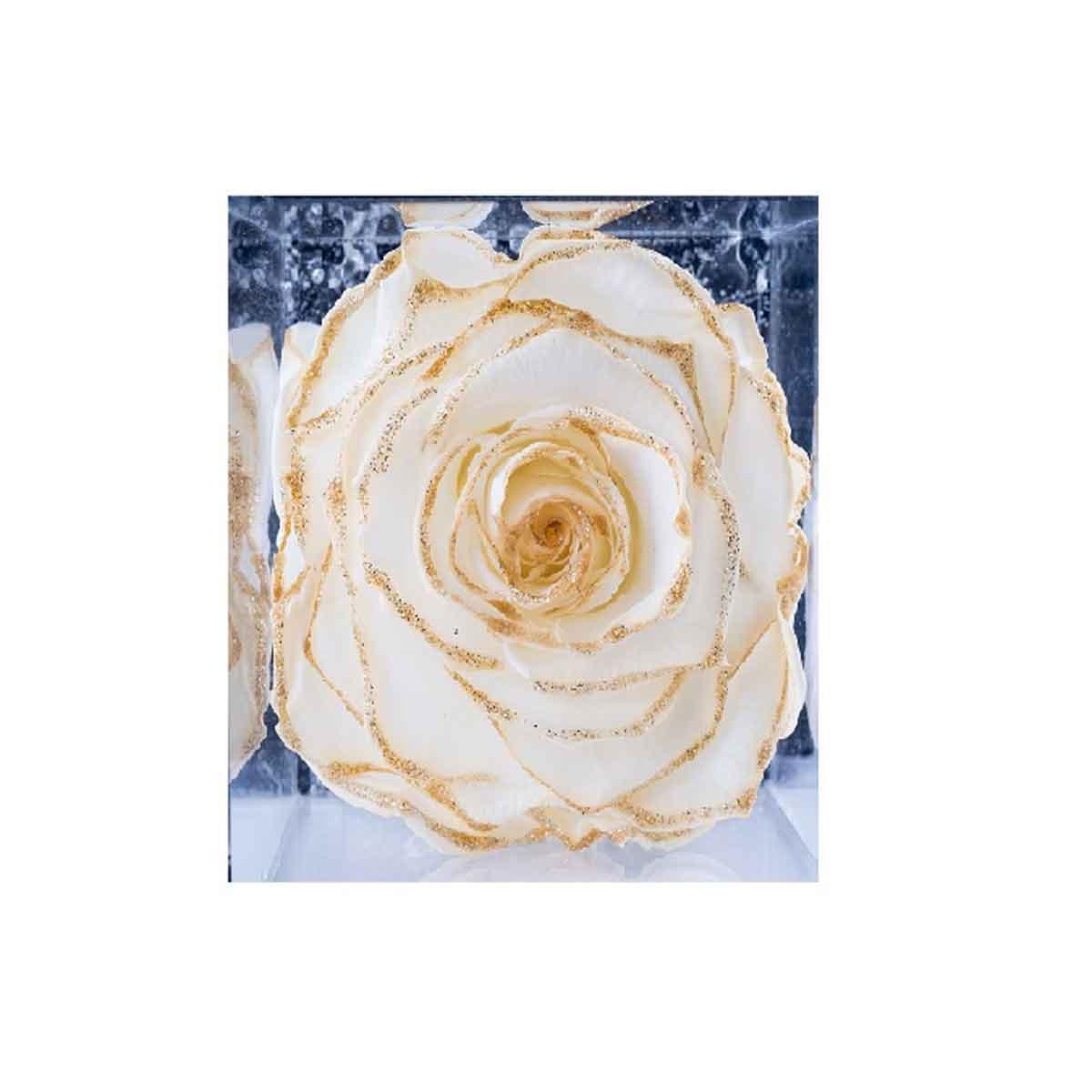 Flowercube 6×6 – Le rose stabilizzate con glitter