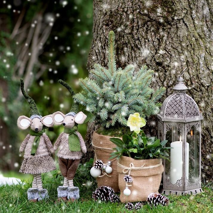 Tradizione, natura e calore per la Magia del Natale Viridea 2020