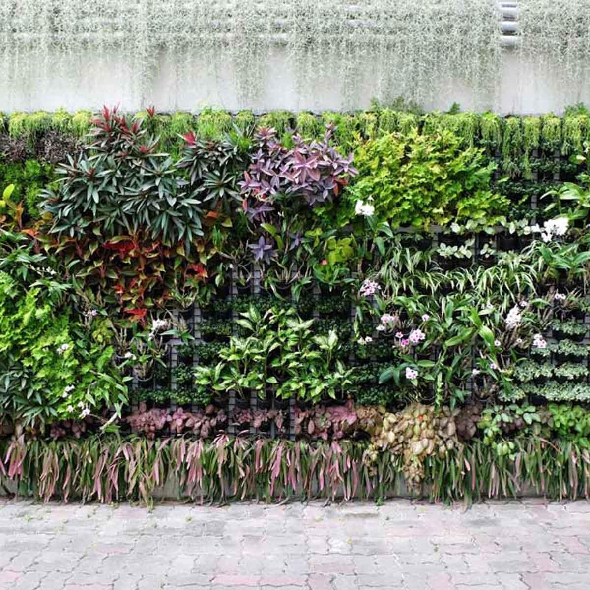 Contro smog e isole di calore un aiuto da giardini pensili e verticali