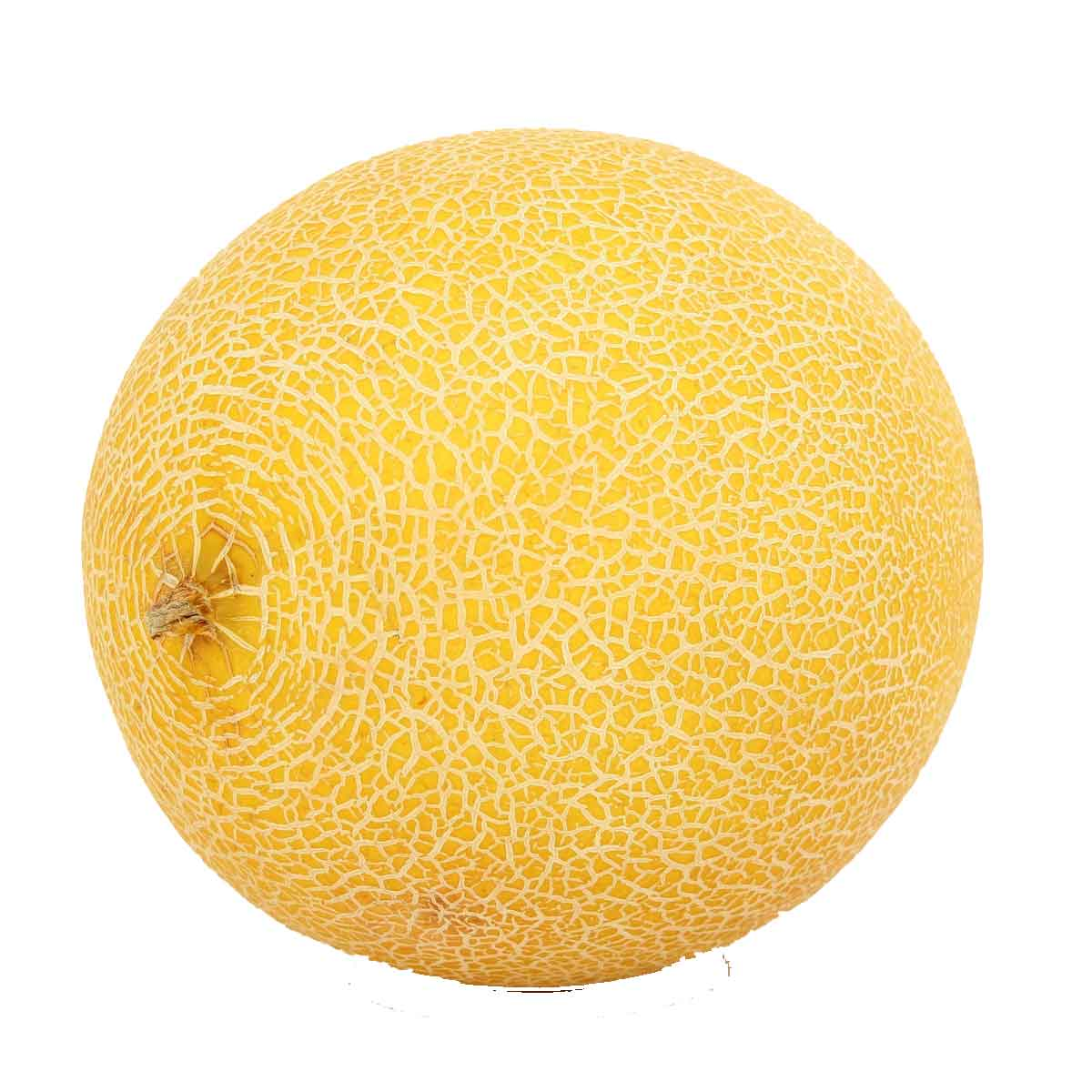 Meloni in pack da 4 piante