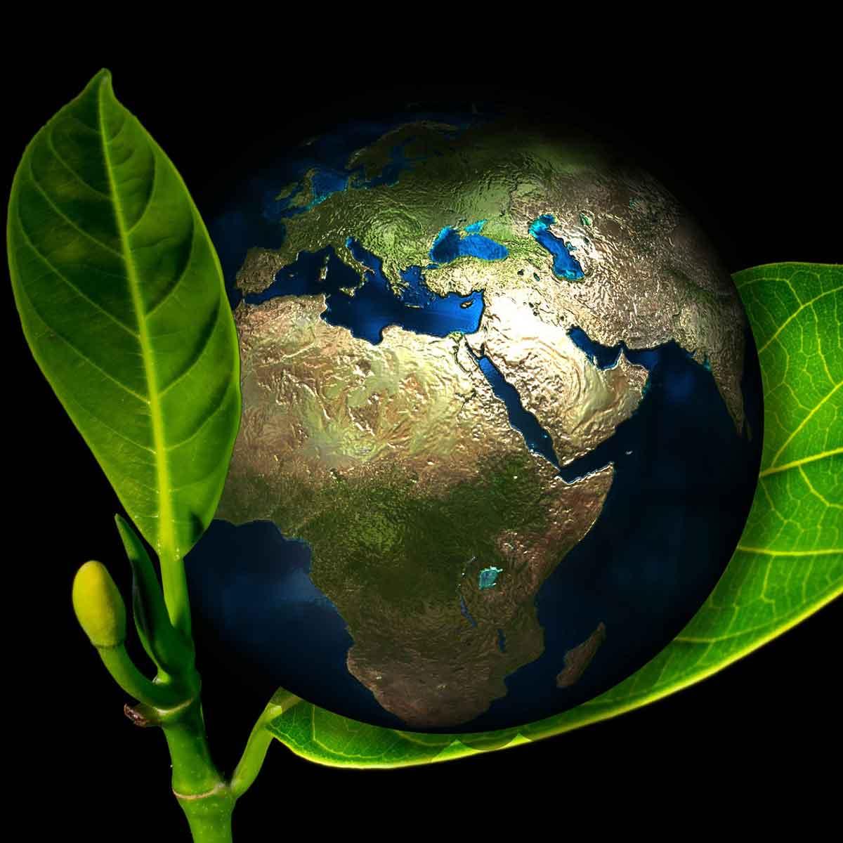 Il verde della nuova stagione è BIO