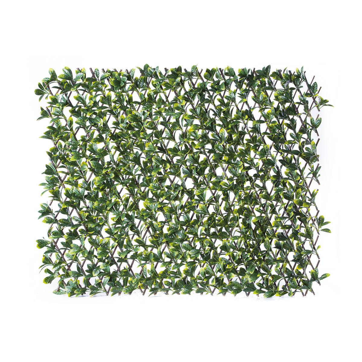 Traliccio estensibile con foglie